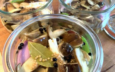 Eingelegte Pilze im Gewürzsud
